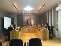 Câmara aprova Projeto de Lei que institui o Dia Municipal da Flor